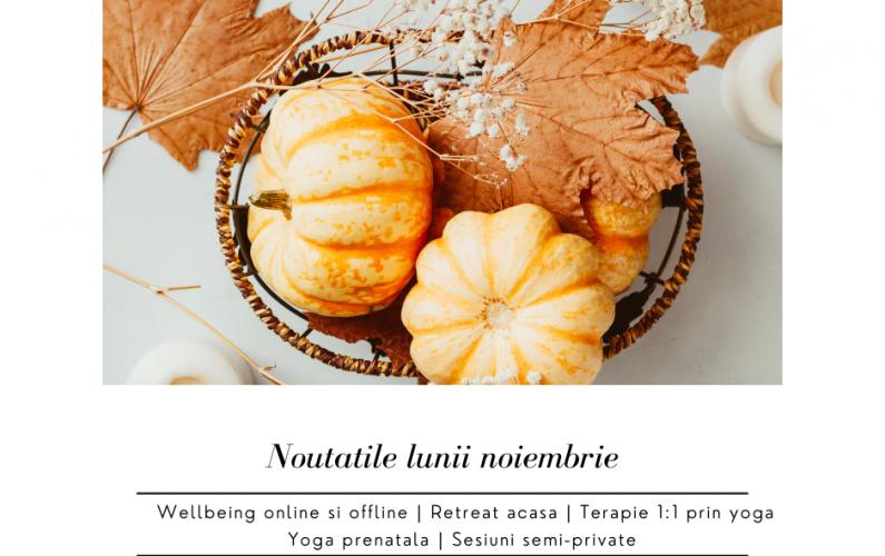 Noutati noiembrie (1)
